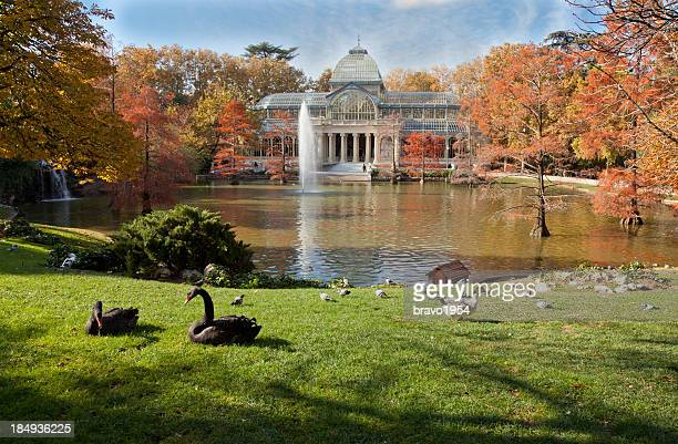 a crystal palace in retiro park, madrid - madrid stockfoto's en -beelden