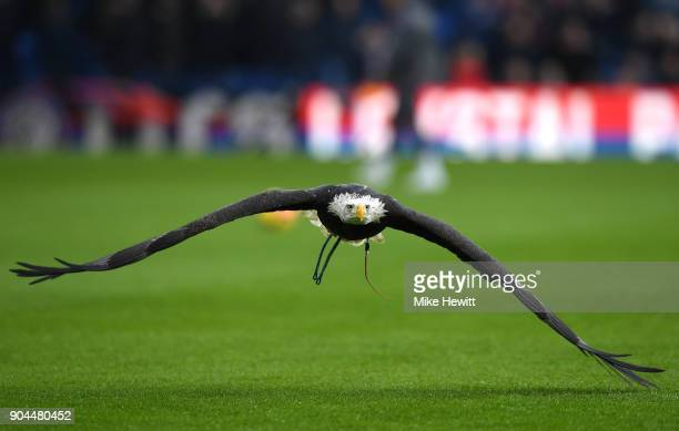 Crystal Palace's bald eagle mascot Kayla is seen flying prior to the Premier League match between Crystal Palace and Burnley at Selhurst Park on...