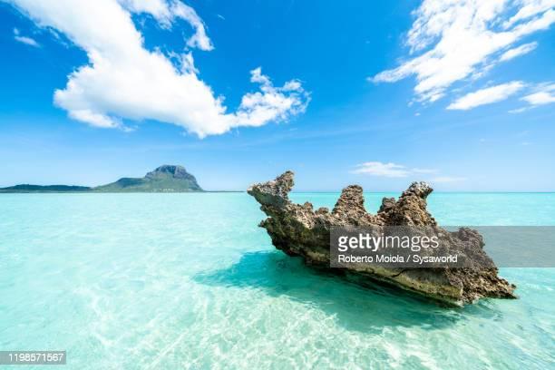 crystal rock in the tropical lagoon, la gaulette, mauritius - nationaal monument beroemde plaats stockfoto's en -beelden