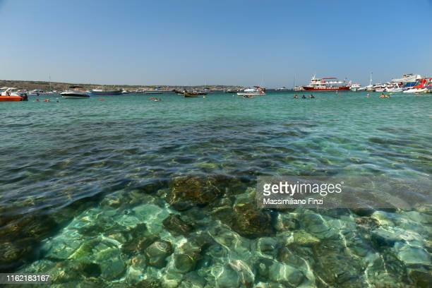 crystal sea water in malta - bucht stock-fotos und bilder