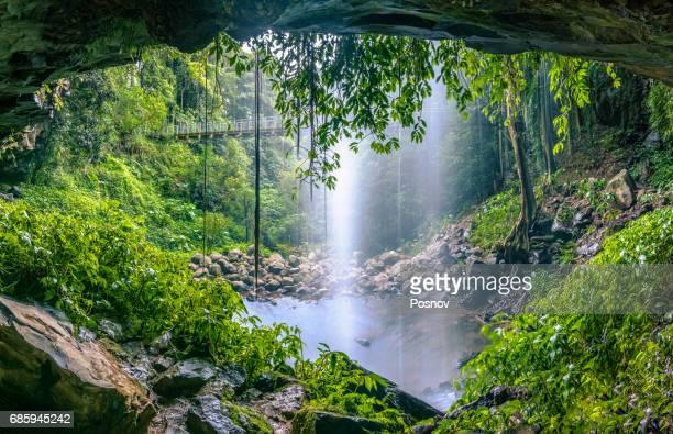 Crystal Shower Falls in Gondwana Rainforests