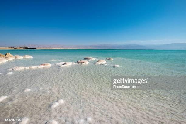 crystallised salt rocks, dead sea, israel - 死海 ストックフォトと画像