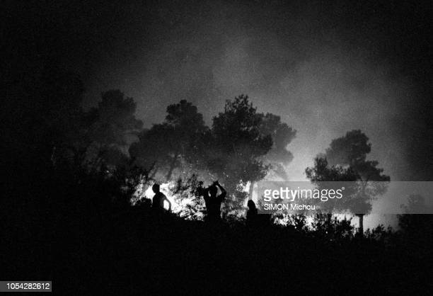 Côte d'Azur France août 1956 De Cannes à Monaco la côte d'Azur lutte contre le feu Ici près de Grasse dans les AlpesMaritimes Dans une forêt des...