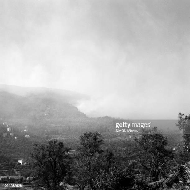 Côte d'Azur France août 1956 De Cannes à Monaco la côte d'Azur lutte contre le feu Ici près de Grasse dans les AlpesMaritimes Vue d'un massif...