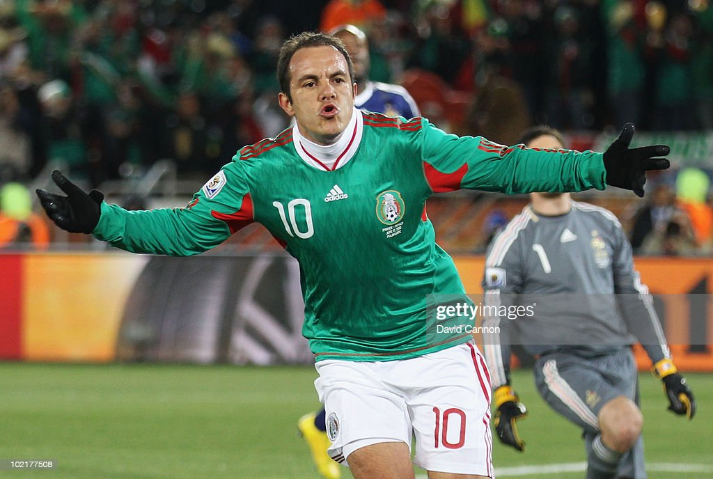 France v Mexico: Group A - 2010 FIFA World Cup