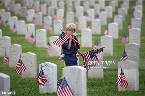Cub scout places US Flags at 2014 Memorial Day Event Los Angeles National Cemetery California