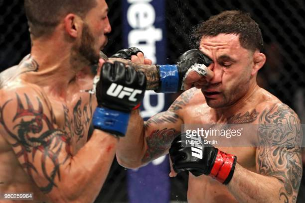 Cub Swanson punches Frankie Edgar in their featherweight fight during the UFC Fight Night event at the Boardwalk Hall on April 21 2018 in Atlantic...