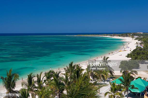 Cuba, Ancon Peninsula, beach lined with palm trees, elevated view