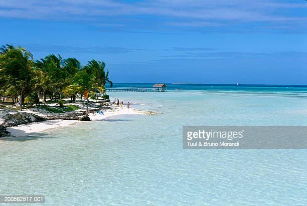 Cuba, Cayo Coco, Cayo Guillermo, sandy beach and sea