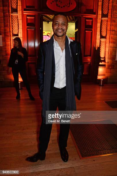 Cuba Gooding Jr attends The Olivier Awards with Mastercard after party at the Natural History Museum on April 8 2018 in London England
