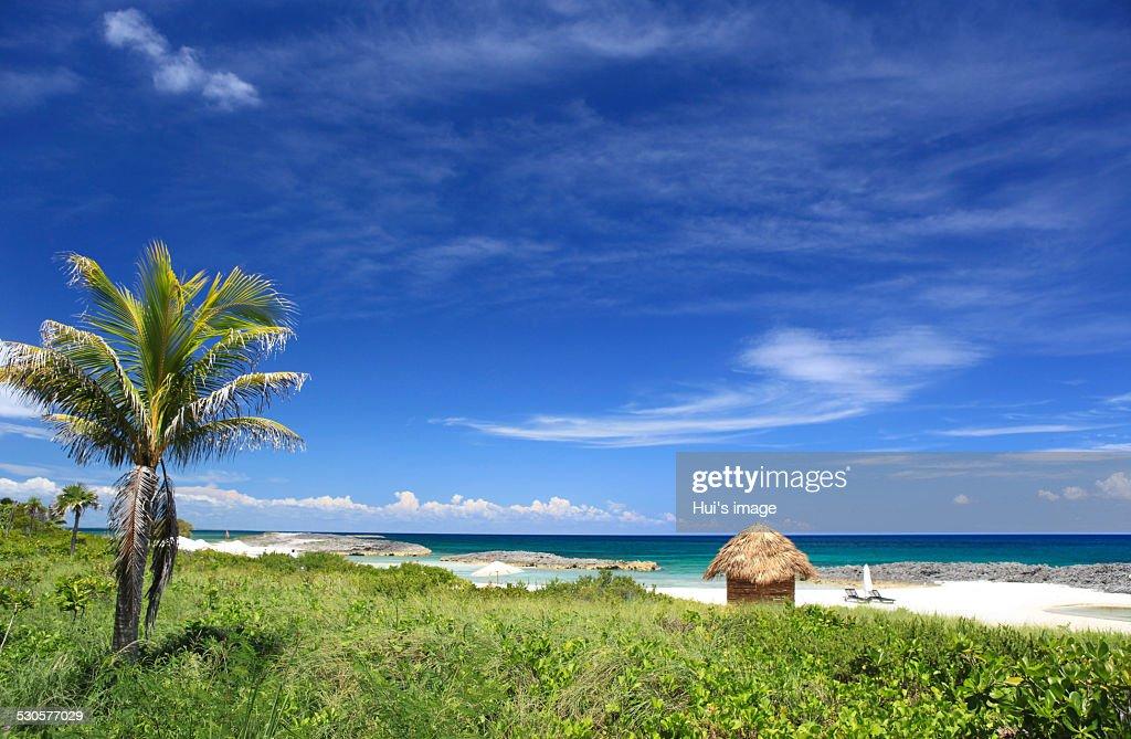 Cuba : Stock Photo