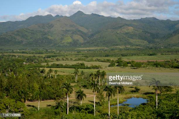 cuba, trinidad area, view on a landscape made of mountains and palm trees, the ingenios valley - beatrice valli foto e immagini stock