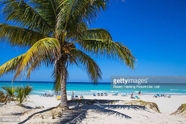 cuba, varadero, varadero beach - varadero beach stock pictures, royalty-free photos & images