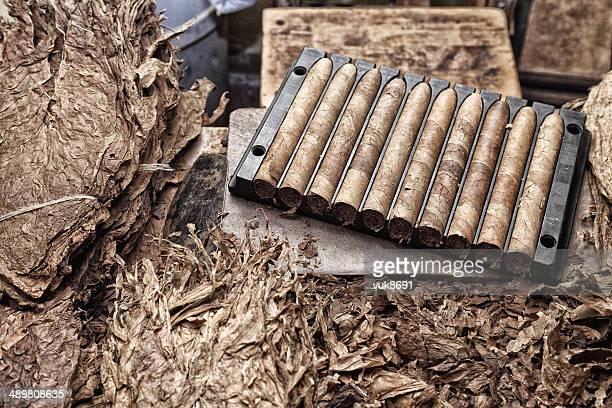 Kubanische Zigarre's Herstellung
