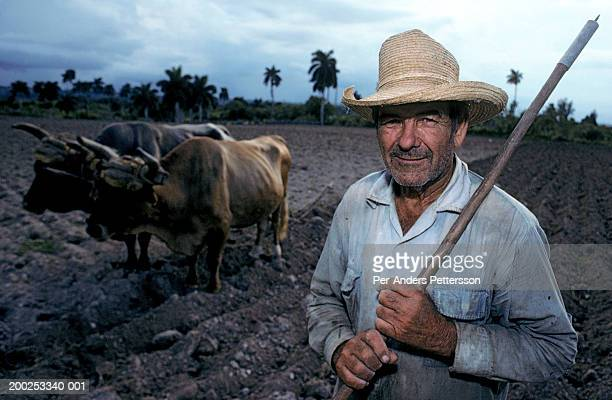 Cuban farmer stands in his fields with his oxen