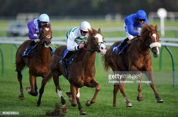 Cubanita ridden by Jim Crowley comes home ahead of Anomaly ridden by Paul Hanagan and Poetic Power ridden by Nicky Mackay to win the PHS Waterlogic...