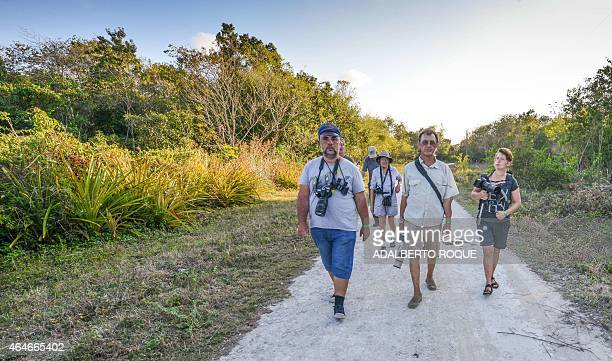 Cubans and tourists from the US and Russia walk to take pictures of birds in Cienaga de Zapata Bay of Pigs Matanzas Cuba 200 km southeast of Havana...