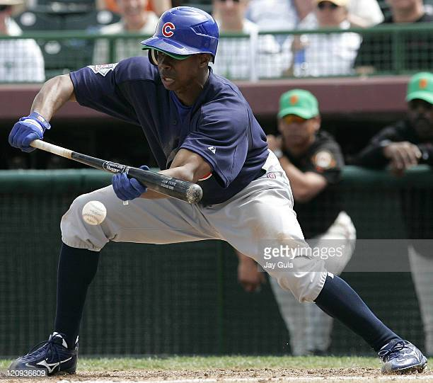 Cubs CF Juan Pierre drops down a bunt in Cactus League action at Scottsdale Stadium in Scottsdale Arizona on March 17 2006