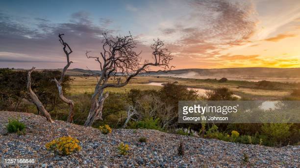 cuckmere river - footpath stock pictures, royalty-free photos & images