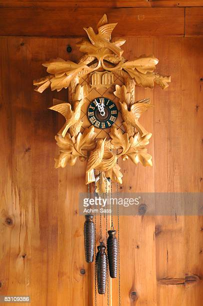 Cuckoo clock on wooden wall, close-up