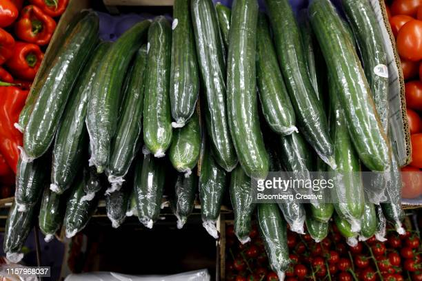 cucumbers sit wrapped in plastic film wrapping - pepino fotografías e imágenes de stock