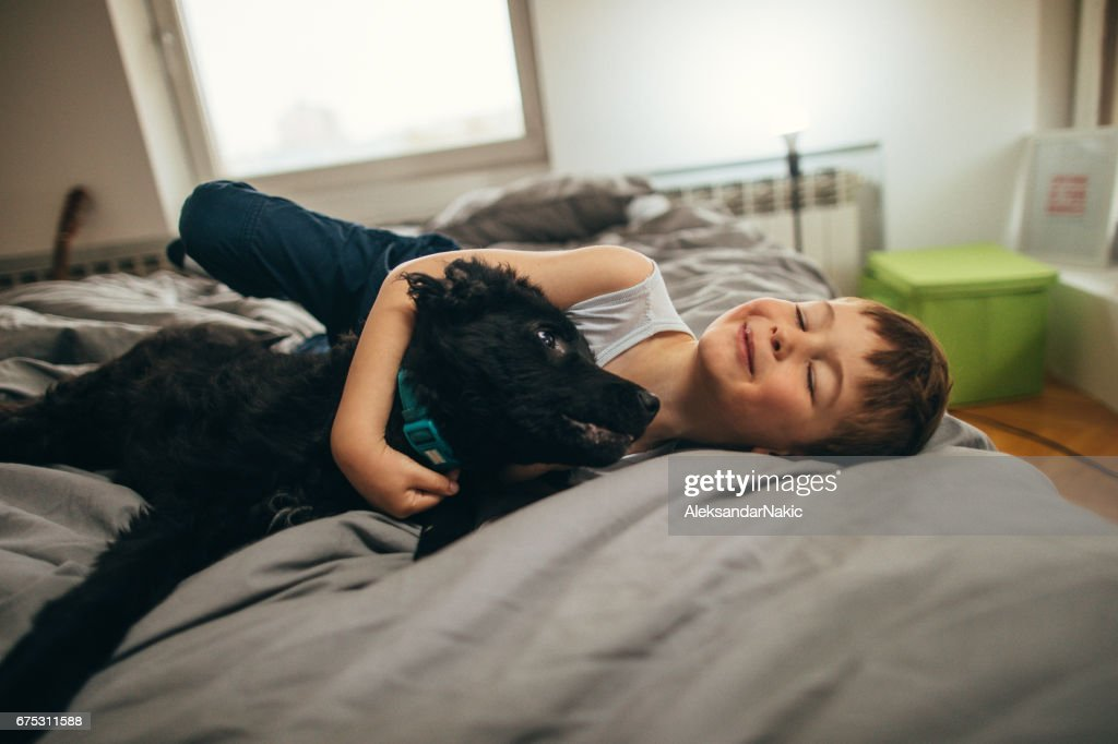 Photo of a cheerful little boy and his little black dog lying down in bed and cuddling