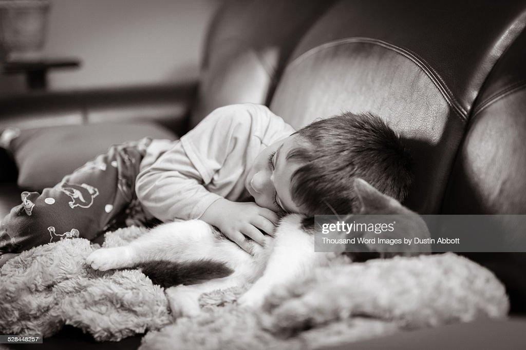 Cuddling : Stock Photo