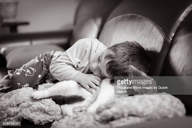 cuddling - dustin abbott stock pictures, royalty-free photos & images