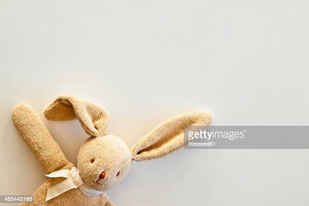 cuddly toy rabbit, close up - stuffed toy stock pictures, royalty-free photos & images