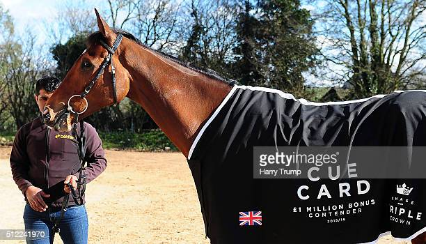 Cue Card poses with a coat relating to the Million Pound bonus on offer if Cue Card was to win the Cheltenham Gold Cup at Spurles Farm on February 25...