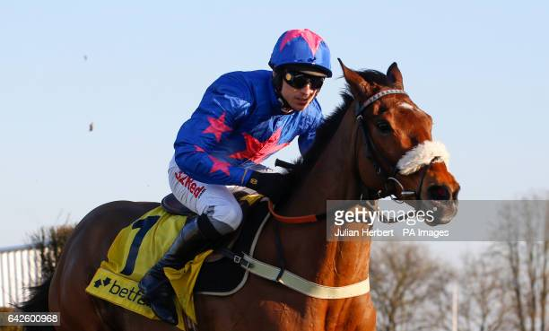 Cue Card ridden by Paddy Brennan pulls away from an early fence before going on to win The Betfair Ascot Steeple hase Race run during the Betfair...
