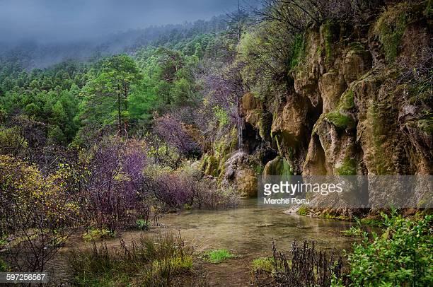 cuervo river in cuenca - cuenca provincia de cuenca fotografías e imágenes de stock