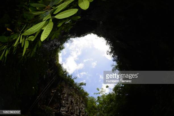 cueva del indio. - canopy stock pictures, royalty-free photos & images