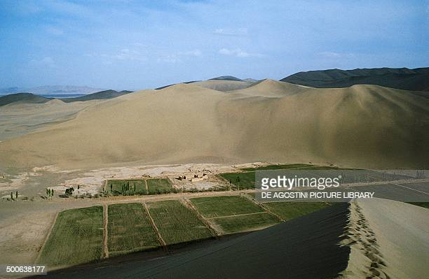 Cultivated fields Dunhuang Oasis China