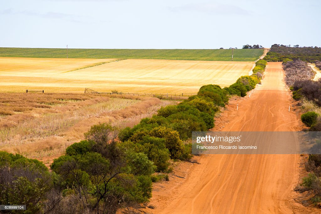 Cultivated land, Western Australia : Stock-Foto