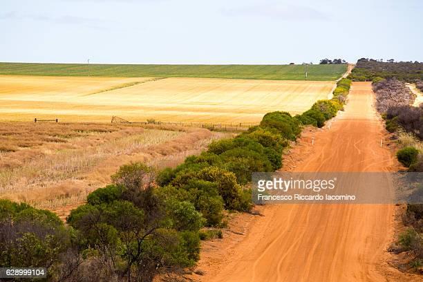 cultivated land, western australia - francesco riccardo iacomino australia foto e immagini stock