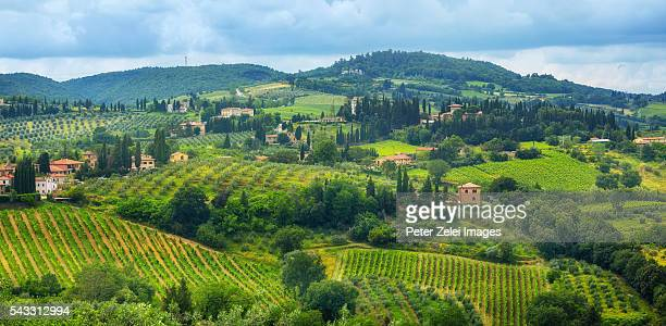 cultivated lands in tuscany, italy - mediterranean culture stock pictures, royalty-free photos & images