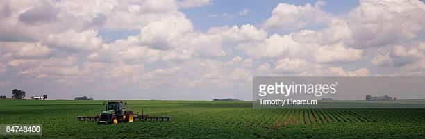 cultivating soybeans - timothy hearsum - fotografias e filmes do acervo