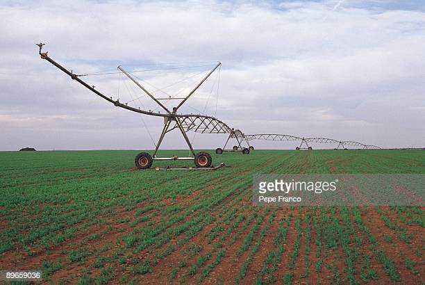 Cultivation fields Big water sprayers in a irrigated land in the great plain of La Mancha
