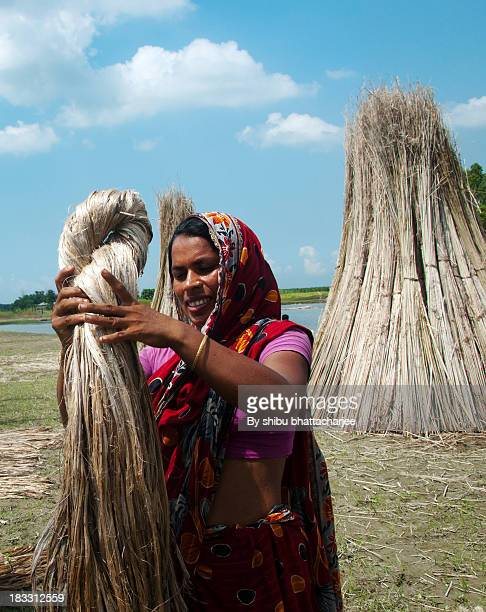 Cultivator House wife busy to make jute dry