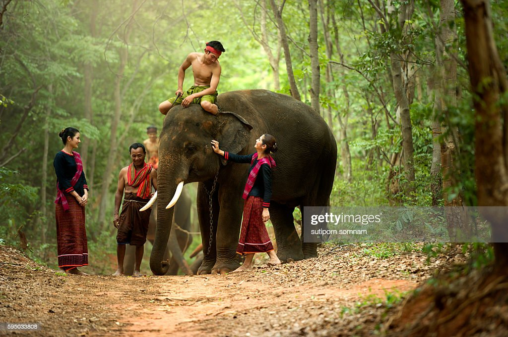 Culture Gui The mahout and the elephant : Stock Photo