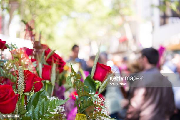 culture - roses catalonia stock pictures, royalty-free photos & images