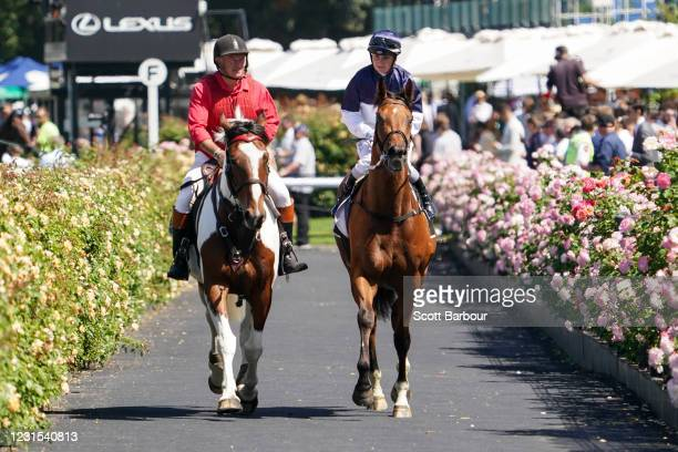 Cumberbatch ridden by Jamie Kah returns to the mounting yard after winning the 2021 Lexus Melbourne Cup Tour at Flemington Racecourse on March 06,...