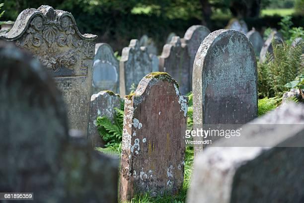 uk, cumbria, lanercost, old gravestones on a graveyard - grabmal stock-fotos und bilder