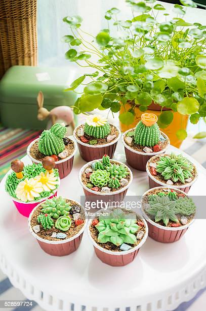 Cup cakes decorated to look like little cactus.