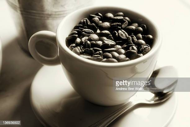 cup full of fresh whole coffee beans