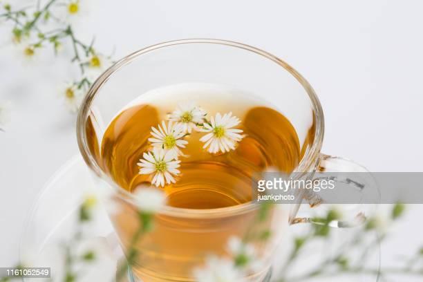 tasse kamillentee mit kamillenblüten - tee warmes getränk stock-fotos und bilder