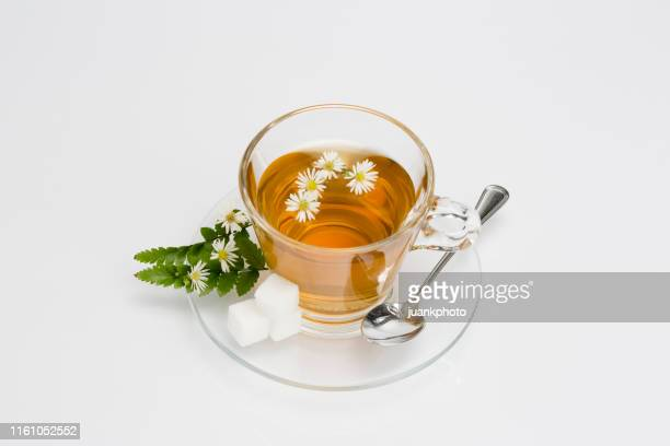 cup of camomile tea with camomile flowers - chamomile tea stock pictures, royalty-free photos & images