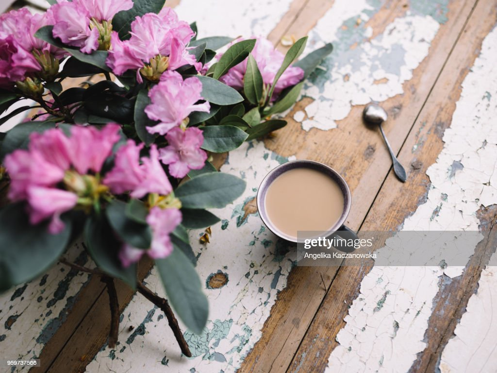 cup of coffee and pink flowers on the table : Stock-Foto
