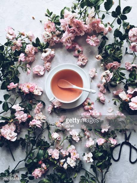 cup of herbal tea with dried roses - julia rose stock photos and pictures